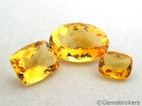 Various cuts citrine